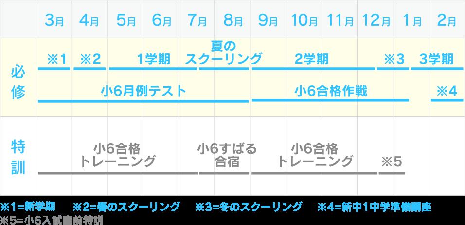 1年間のスケジュール